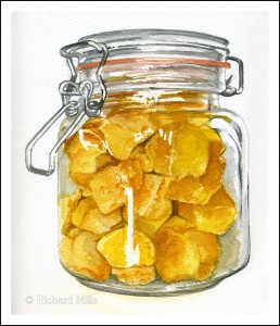 Cinder Toffee 2 (Honeycomb) - Watercolour