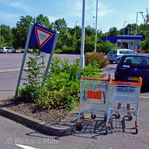 Day-183-28-Sainsburys-Fareham-esq-©
