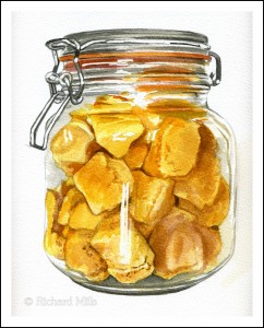 Cinder Toffee 1 (Honeycomb) - Watercolour