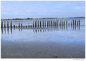 West Wittering - '11 (Jan) 16 e © II resize